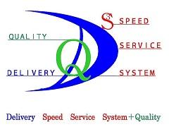 DS3Q_Logo-2